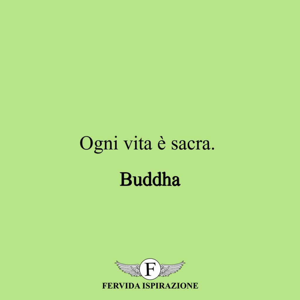 Ogni vita è sacra. ~ Buddha