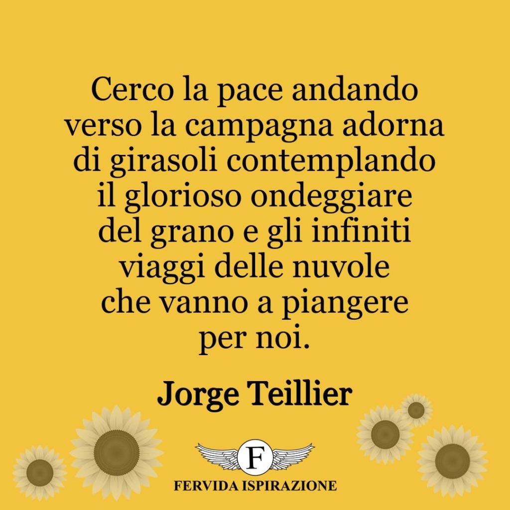 Cerco la pace andando verso la campagna adorna di girasoli contemplando il glorioso ondeggiare del grano e gli infiniti viaggi delle nuvole che vanno a piangere per noi.  ~ Jorge Teillier