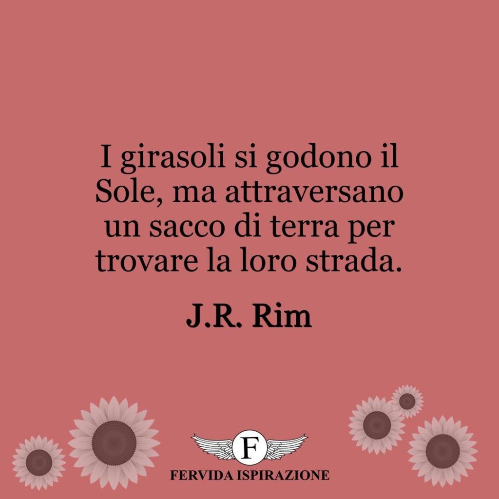 I girasoli si godono il Sole, ma attraversano un sacco di terra per trovare la loro strada.  ~ J.R. Rim