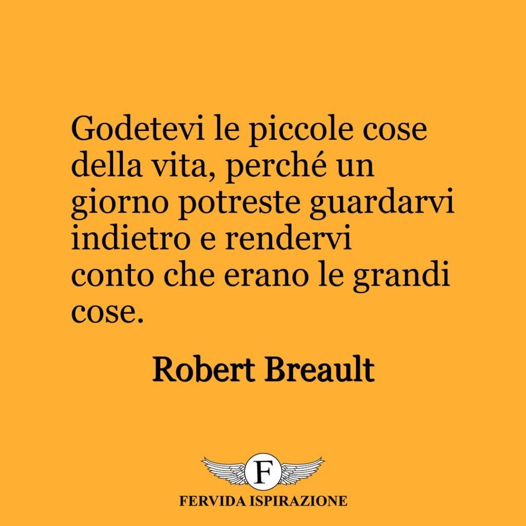 Godetevi le piccole cose della vita, perché un giorno potreste guardarvi indietro e rendervi conto che erano le grandi cose.  ~ Robert Breault