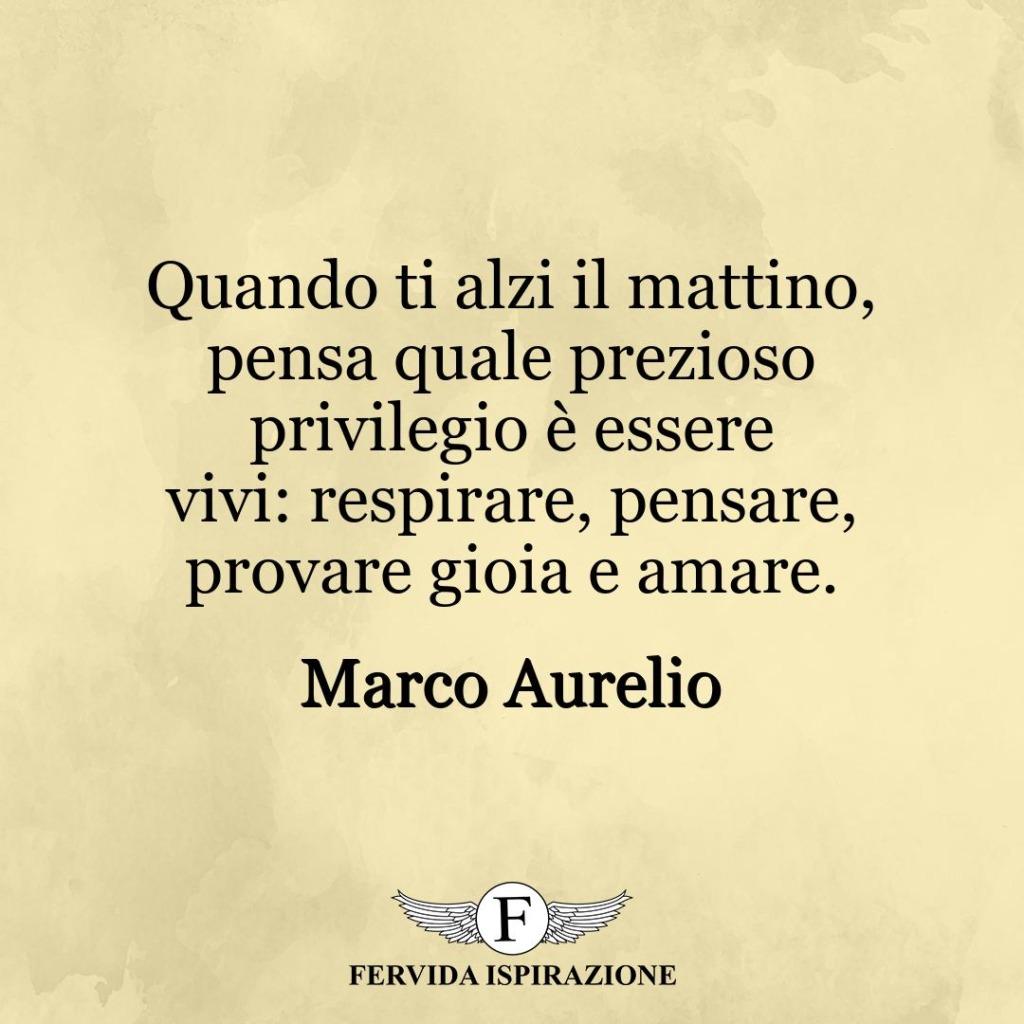 Quando ti alzi il mattino, pensa quale prezioso privilegio è essere vivi: respirare, pensare, provare gioia e amare. ~ Marco Aurelio