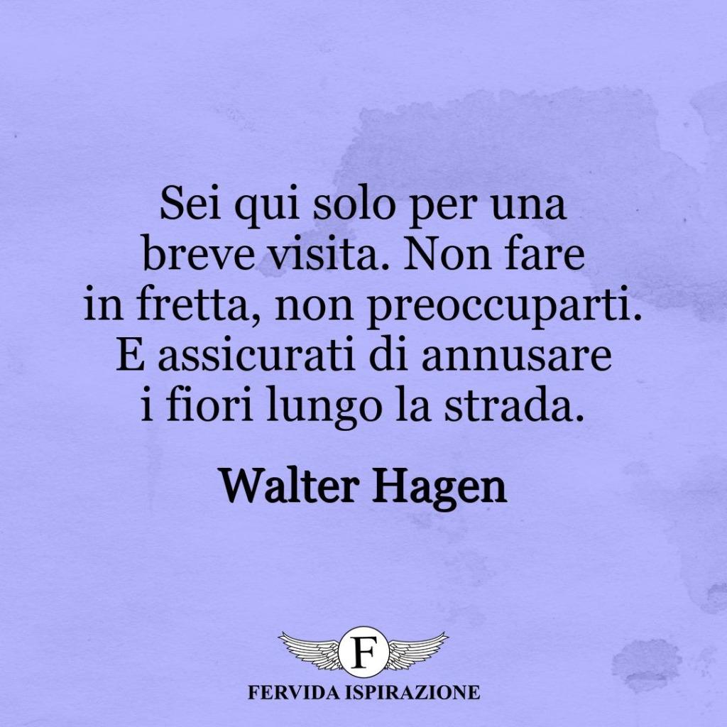 Sei qui solo per una breve visita. Non fare in fretta, non preoccuparti. E assicurati di annusare i fiori lungo la strada. ~ Walter Hagen