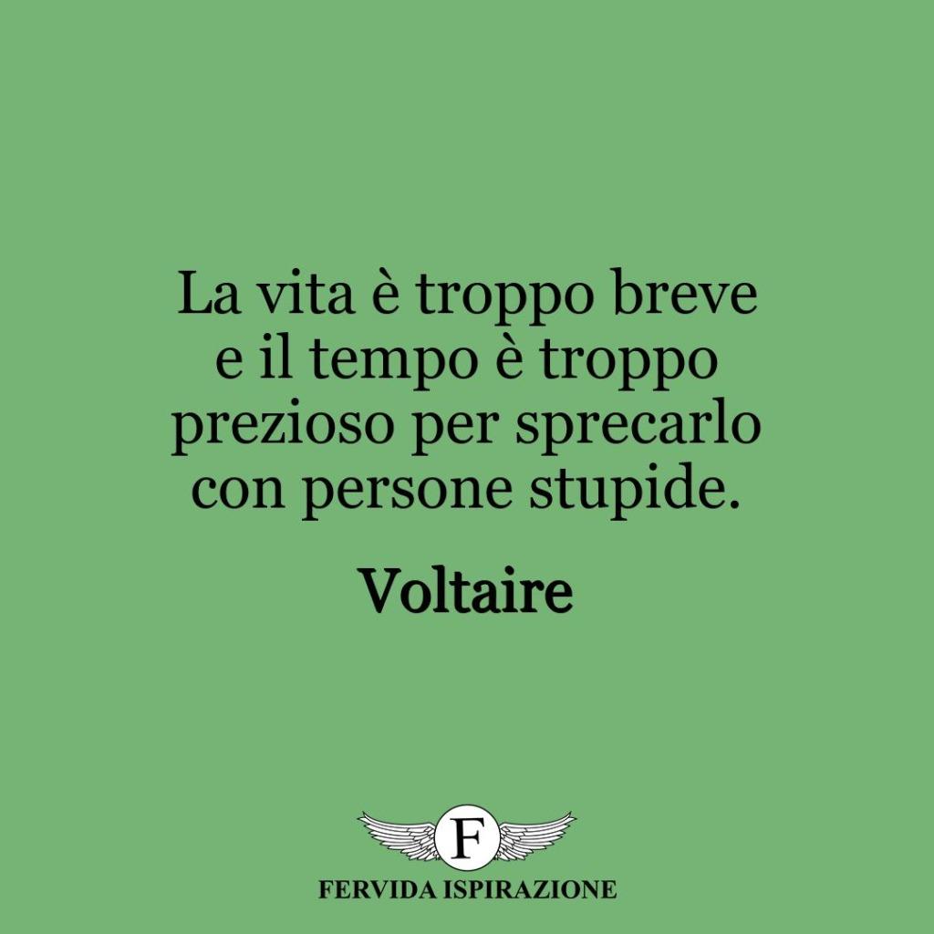La vita è troppo breve e il tempo è troppo prezioso per sprecarlo con persone stupide. ~ Voltaire